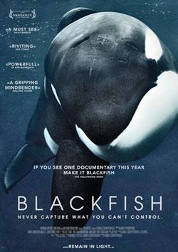Blackfish -