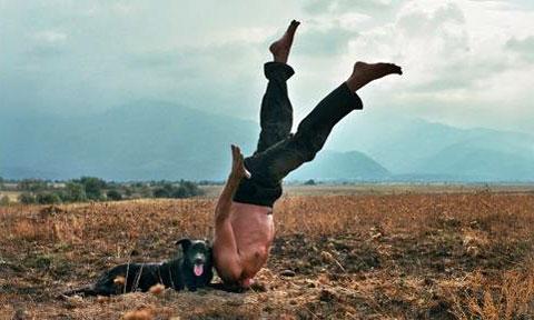 Vlaamse Film Festival: Drift