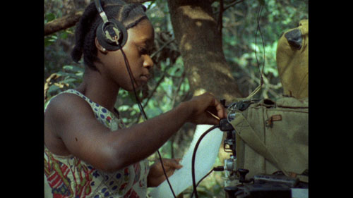 Movies That Matter 2015 Concerning Violence-