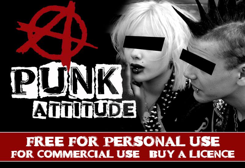 Punk: Attitude (2005)